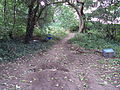 Penistone Drive footpath, Little Sutton 3.JPG