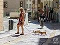 People in Rhône-Alpes (36067898763).jpg