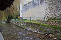 Perthes-en-Gatinais - Rivière l'Ecole - 2012-11-14 - IMG 8249.jpg