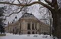 Petit Palais sous la neige.jpg