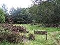 Picnic Place - geograph.org.uk - 240592.jpg