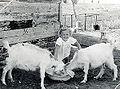 PikiWiki Israel 9244 Girl with goat - Moshav Herut.jpg