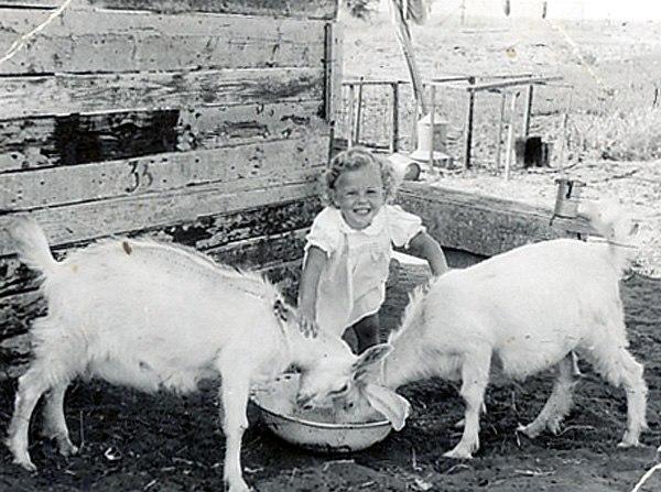 PikiWiki Israel 9244 Girl with goat - Moshav Herut