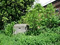 Pillbox - geograph.org.uk - 177651.jpg