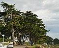 Plage de Port-Navalo - panoramio (1).jpg