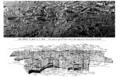 Plan de Rome de Paul Bigot, journal l'illustration du 12 août 1911.png