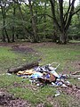 Please Take Your Litter Home With You - geograph.org.uk - 43418.jpg