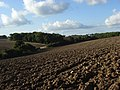 Ploughed fields, Membury - geograph.org.uk - 256773.jpg