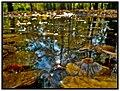 Pocsolya - panoramio.jpg
