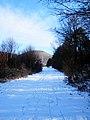 Podhradík sneh 18 Slovakia 3.jpg