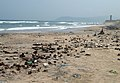 Pollution due to domestic garbage at VUDA Park beach.jpg