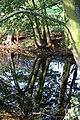 Pond near Wyville - geograph.org.uk - 77429.jpg