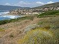 Porto Alabe (elicriso) - panoramio.jpg