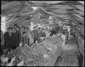 "Poston, Arizona. New Year's Fair. View of throngs which viewed ""home grown vegetables on display"" . . . - NARA - 536666.tif"