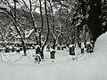 Praha, Smíchov, Bertramka, hřbitov pod sněhem.JPG