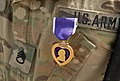 Purple Hearts for public affairs 130806-Z-AL584-064.jpg