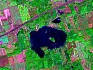 Puslinch Lake - Satellite view