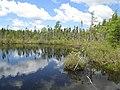 Puzzle Lake, Kejimkujik National Park, NS (14199830749).jpg