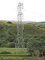Pylon - geograph.org.uk - 493331.jpg