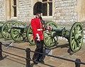 Queen's Guard (5987369356).jpg