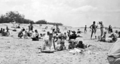 Queensland State Archives 1173 Beach scene Maroochydore January 1931.png