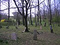 Régi evangélikus temető, 2008 Oroszlány020.jpg
