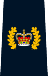 RCMP Staff Sergeant Major.png