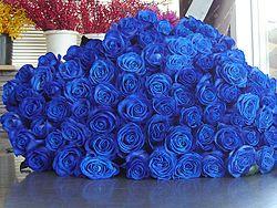 Скачать бесплатно музыку синие розы