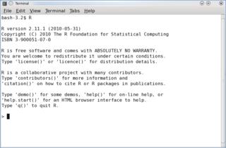 programming language for statistical computing