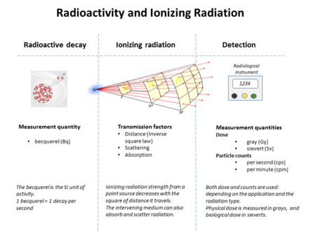Graphic showing relationships between radioactivity and detected ionizing radiation Radioactivity and radiation.png