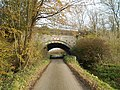 Rail bridge on Wagg Drove, Huish Episcopi, Somerset 06.jpg