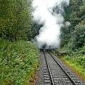 Railway at Cheddleton Heath, Staffordshire - geograph.org.uk - 1479438.jpg