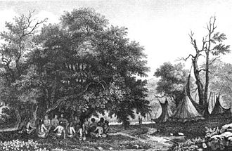History of Gainesville, Florida - Timucua teepee village in Florida circa 1562