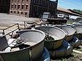 Recycled Cascade Park Tumblebug - panoramio.jpg