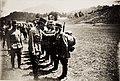Reise Kaiser Karls I. an die Isonzofront, Istrien, Kärnten und Vorarlberg. in der Zeit vom 1-6.VI.1917. 4.6.1917 - Ankunft in Tarvis (BildID 15565226).jpg