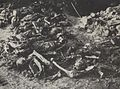 Remnants of the Polish prisoners murdered at Lublin Castle.jpg