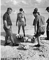 Research team examining clams picked up in reef area at Namu Island, 1947 (DONALDSON 92).jpeg