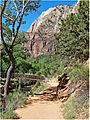 Return to Start. Zion NP, Angel's Landing Trail 5-1-14zw (14214002427).jpg