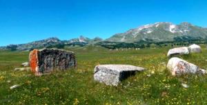 Riblje jezero Novakovici Zabljak