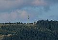 Richtfunkturm Hoher Wald.jpg