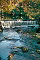 Rio Vizela (2073832901).jpg