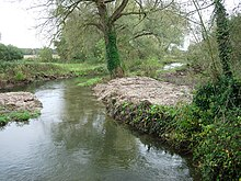 River Itchen - geograph.org.uk - 71945.jpg