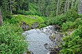 River above Narada Falls, Mount Rainier National Park 02.jpg
