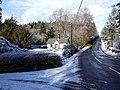 Road at Lake Cottage, Cragside - geograph.org.uk - 1151451.jpg