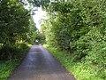 Road at Liscally - geograph.org.uk - 1482246.jpg