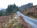 Road in Ballycoyle in the Wicklow Mountains - geograph.org.uk - 1736560.jpg