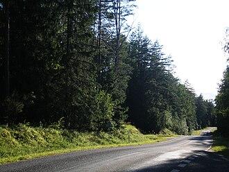 Švenčionys District Municipality - Labanoras Forest