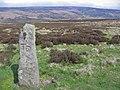 Roadside Stone - geograph.org.uk - 417284.jpg