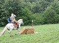 Roman Cavalry Reenactment - Roman Festival at Augusta Raurica - August 2013-086.JPG