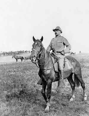 Theodore Roosevelt, the Rough Rider.